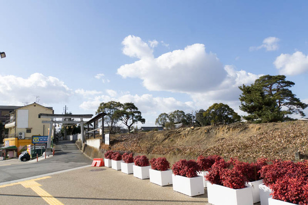 百済寺跡公園-1702032