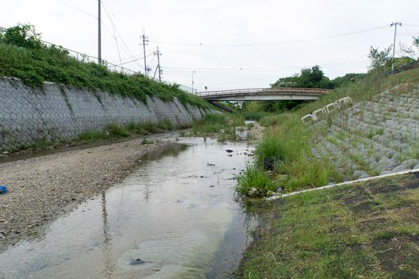 山田池公園-1705255