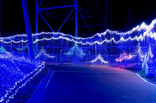 ひらかたパーク光の遊園地-151111134