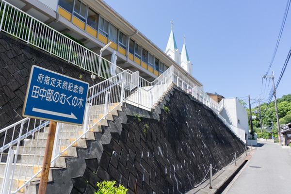 枚方田中邸のむく-7