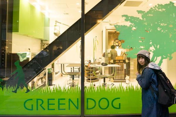 greendog-8