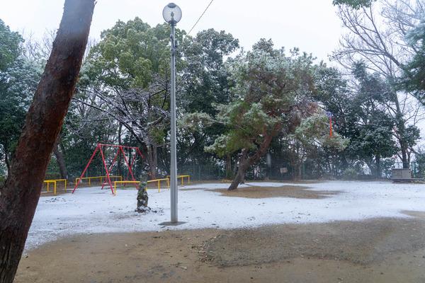 雪-2101124