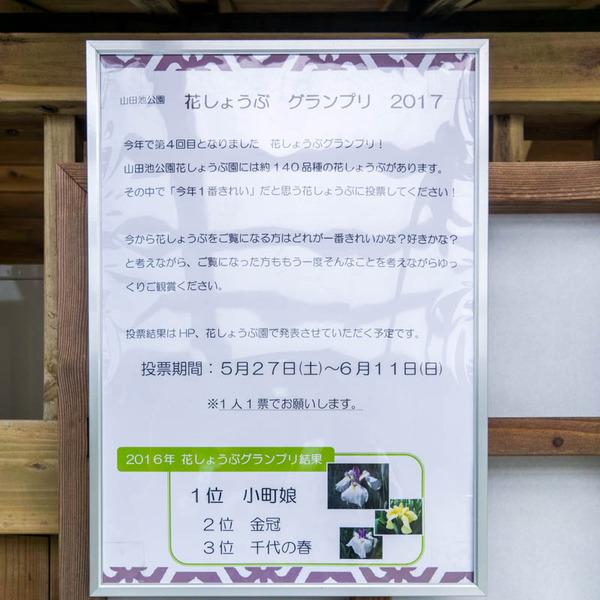 山田池公園-17052523