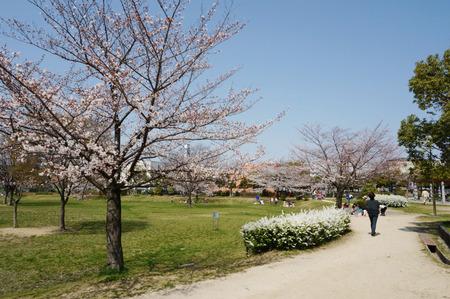 北山公園130330-03