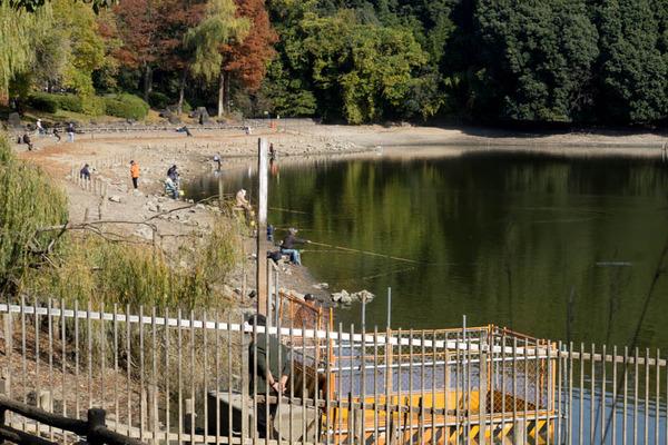 池の水ぜんぶ抜く5-1711271