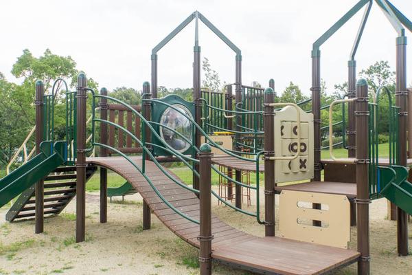 くにみの丘公園-18062811