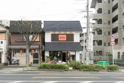 SAKURA-15040603