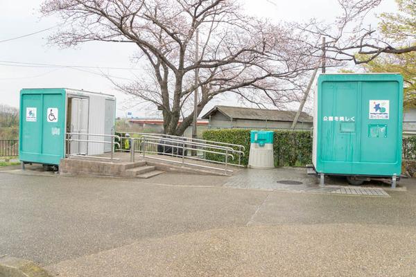 背桜1-1903301-6