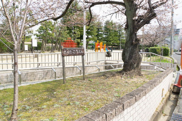 公園-1903282