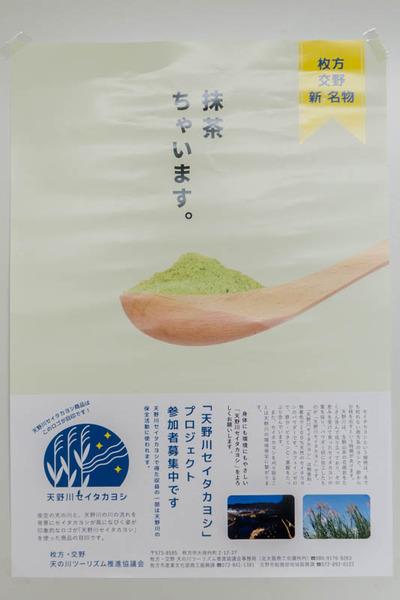 セイタカヨシ-18090613