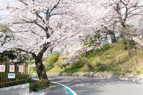 楽寿荘-15033167