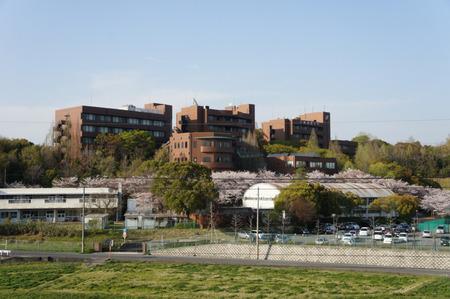 大阪国際大学DSC08127