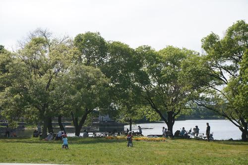 山田池公園-2