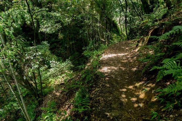 虚空蔵谷の滝-1707262