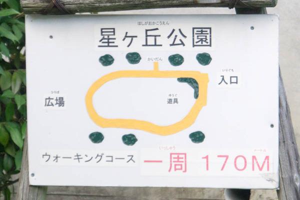 星丘公園-18100117