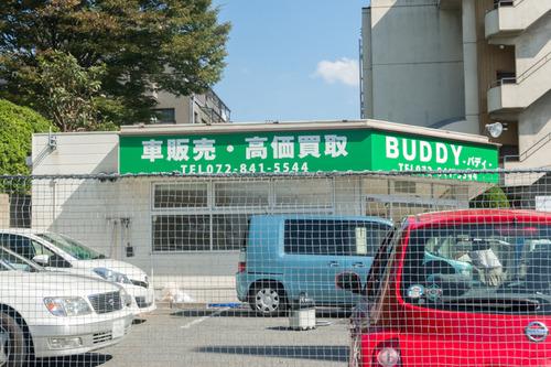 BUDDY-1410089