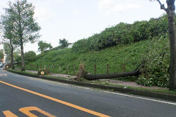 台風21号3-18090530
