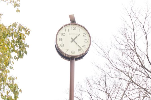 あんご公園-2002255