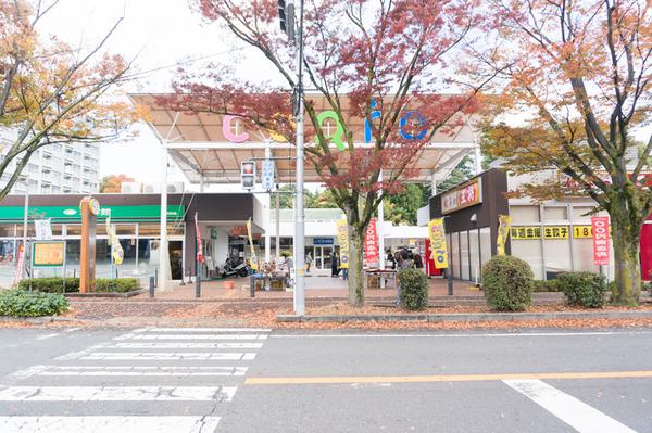 100円商店街-6