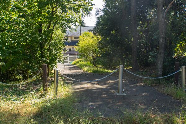 星ヶ丘公園-19100911