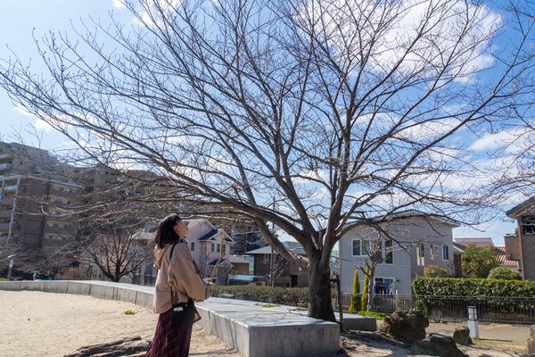 風見の丘公園-2003038