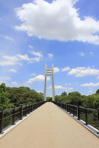 山田池公園120717a-藤山おこめつぶ