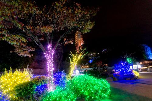 ひらかたパーク光の遊園地-151111201