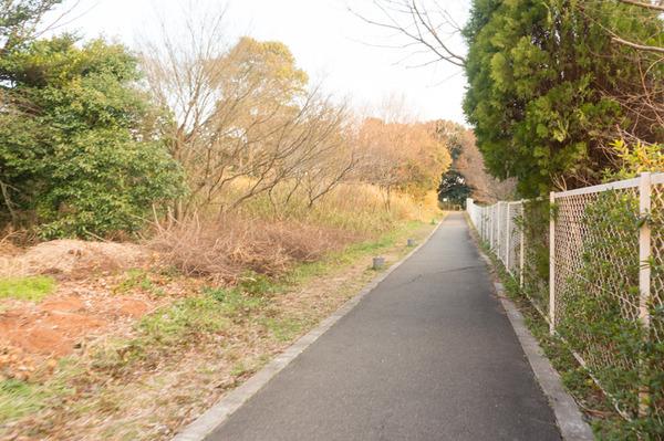 藤阪まちブラ-158