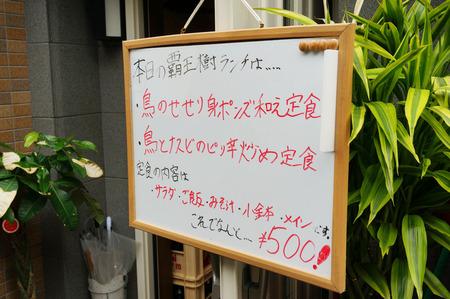 覇王樹130621-09