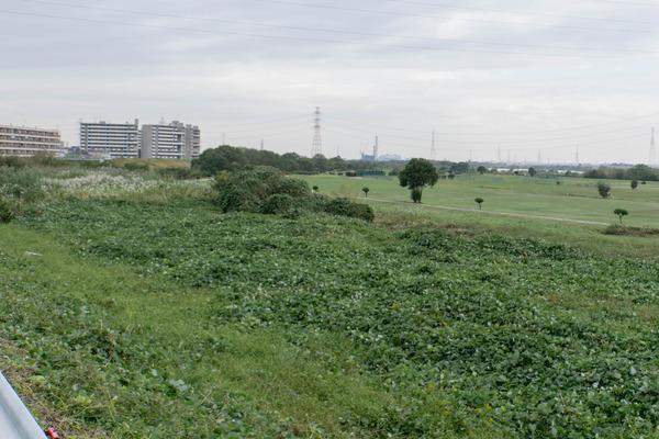淀川-1710242