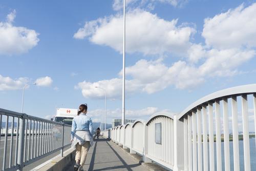 枚方大橋-15101412