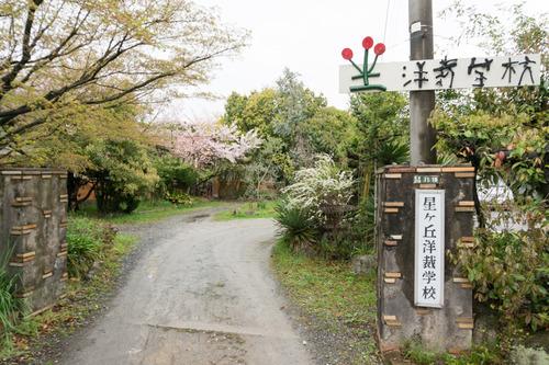桜花祭2015-29