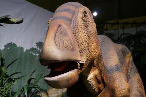 ひらパー恐竜大冒険-49