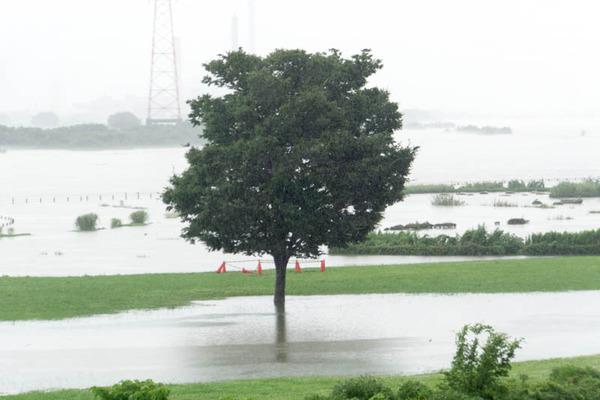河川公園3-1807061