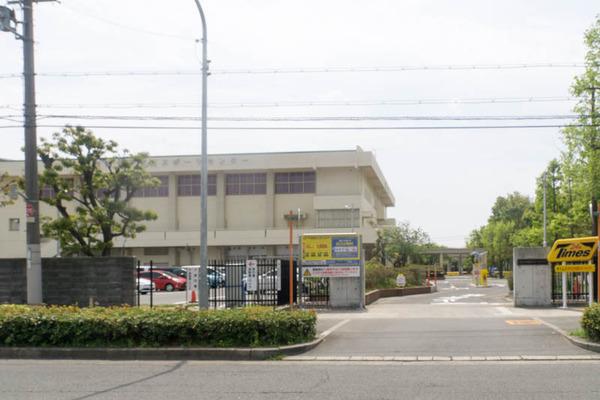 伊加賀スポーツセンター-1904223