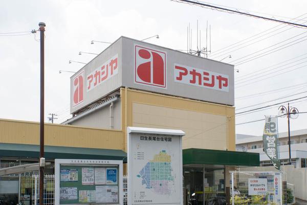 アカシヤ-1608155