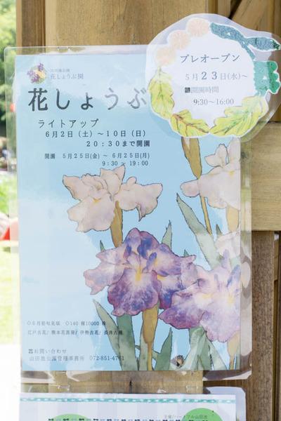 山田池公園-1805253