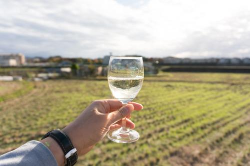 村野ワイン-38