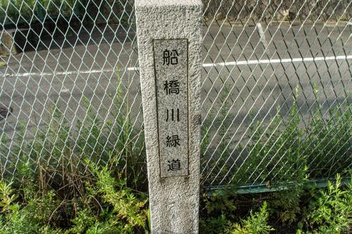 責谷川-14081917