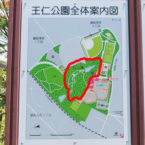 ランニングまとめ-王仁公園
