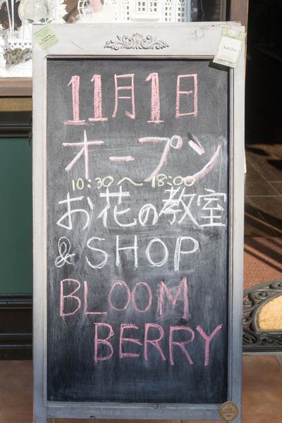 ブルームベリー-1611016
