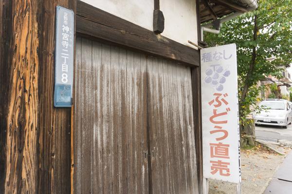 東倉治-119