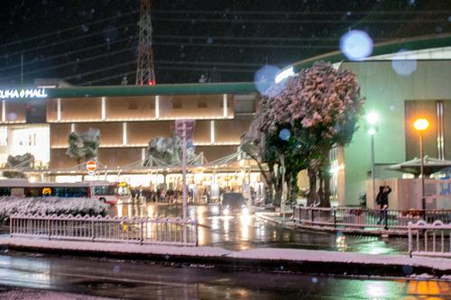 雪の正月-36