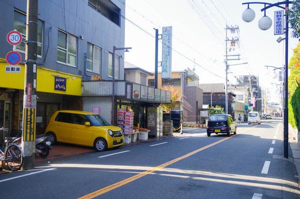 ふくろう-2011173
