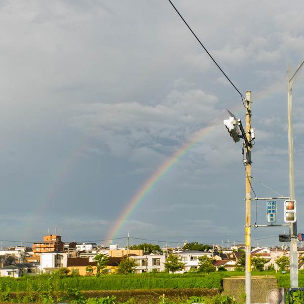 虹-1909051