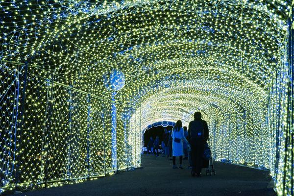 京阪コラボ_ひらパー光の遊園地_GH5小-229
