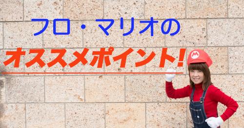 house-gate-yamanoue-furomario16