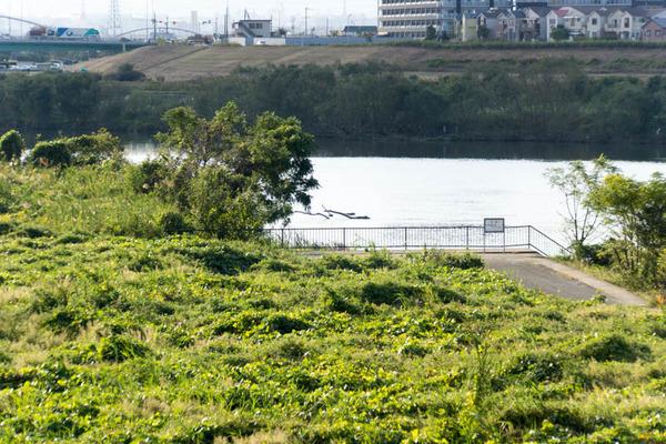 河川敷-1811066