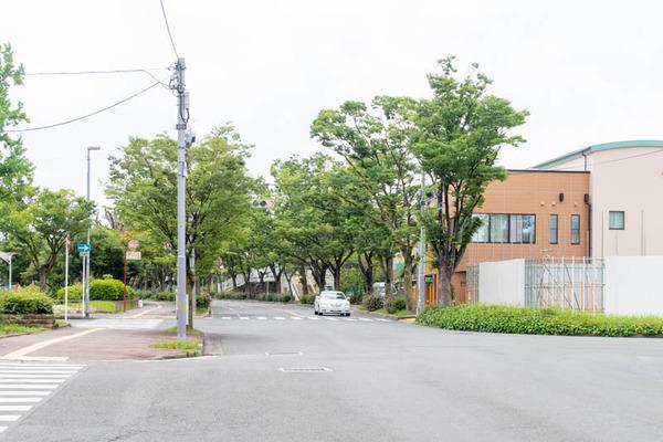 しょうとくかい-2006262