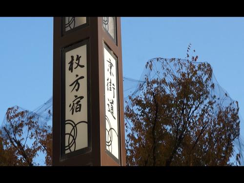 ヒラカタギフトセレクション動画-5